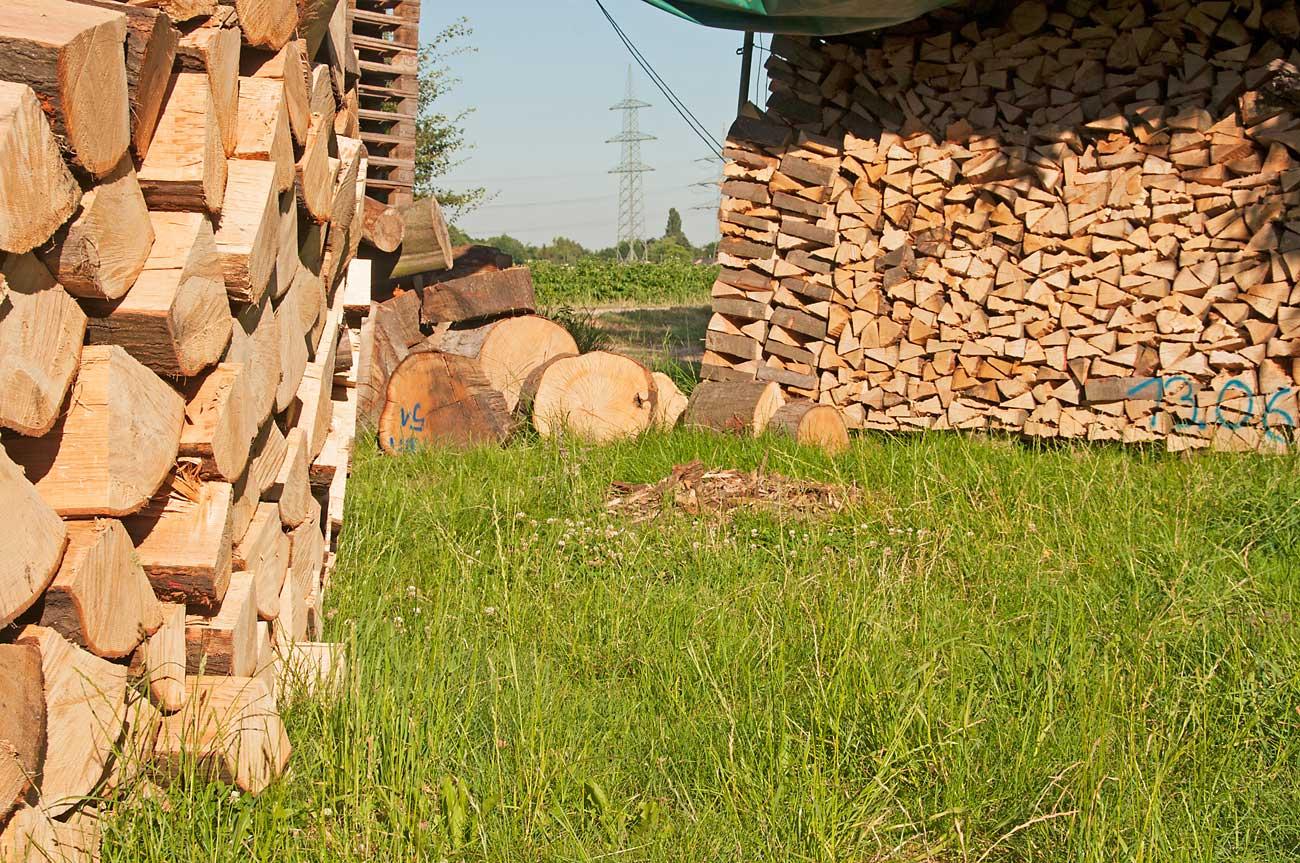 brennholz-dirk-holz-wiese