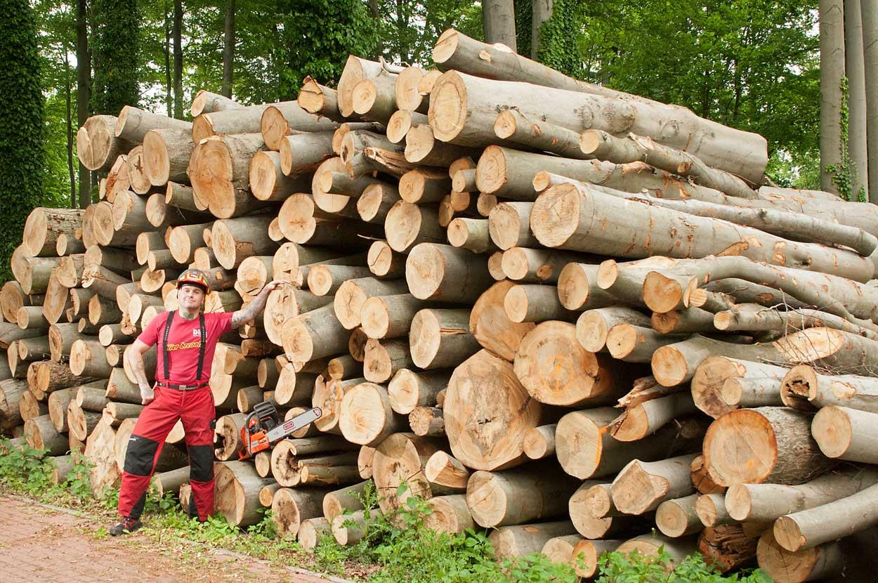brennholz-dirk-willkommen